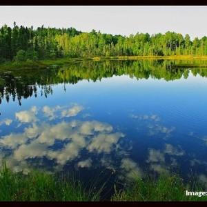 Chequamegon National Forest_Jim Brekke1
