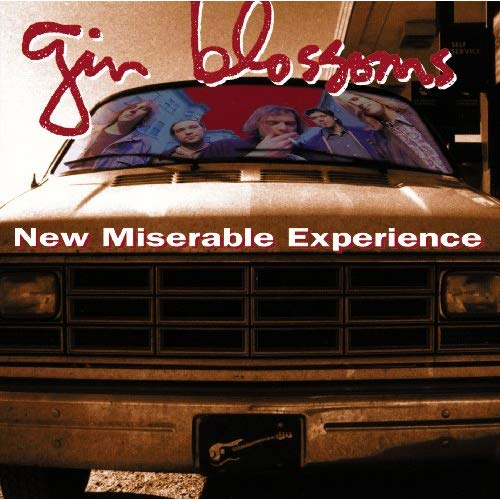 Cheap Tunes Tuesday: Gin Blossoms image