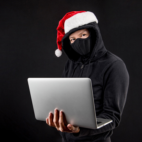 Set your scam alert level to high this holiday! image