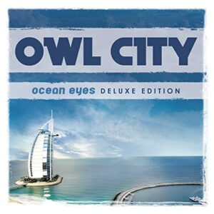 Cheap Tunes Tuesday: Owl City image