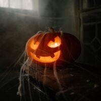 pexels-cottonbro-Pumpkin_cropped